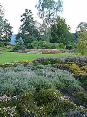 Les jardins de callunes 88 arrosoirs et s cateurs - Bande de bruyere ...