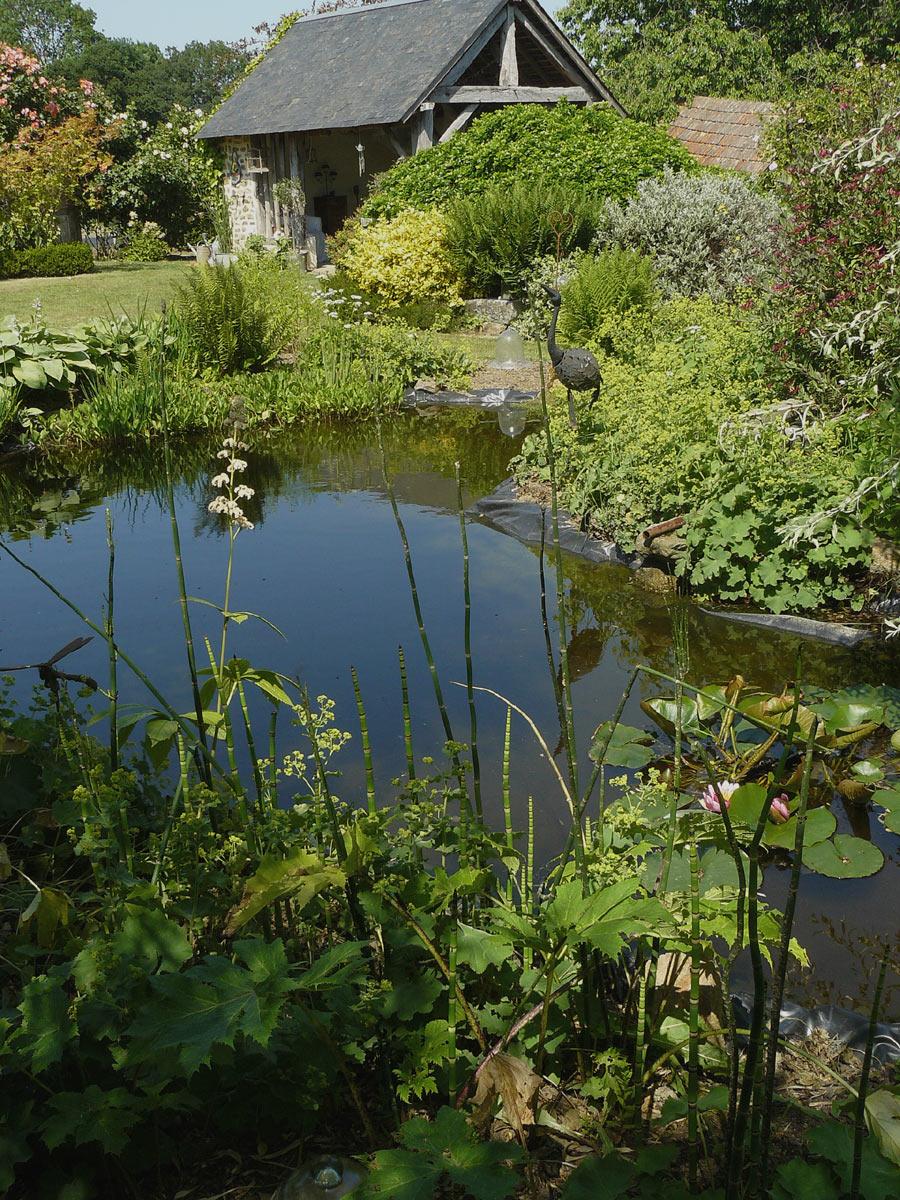 Les fleurs du cassel un jardin isigny le buat 50 for Bd du jardin botanique 50