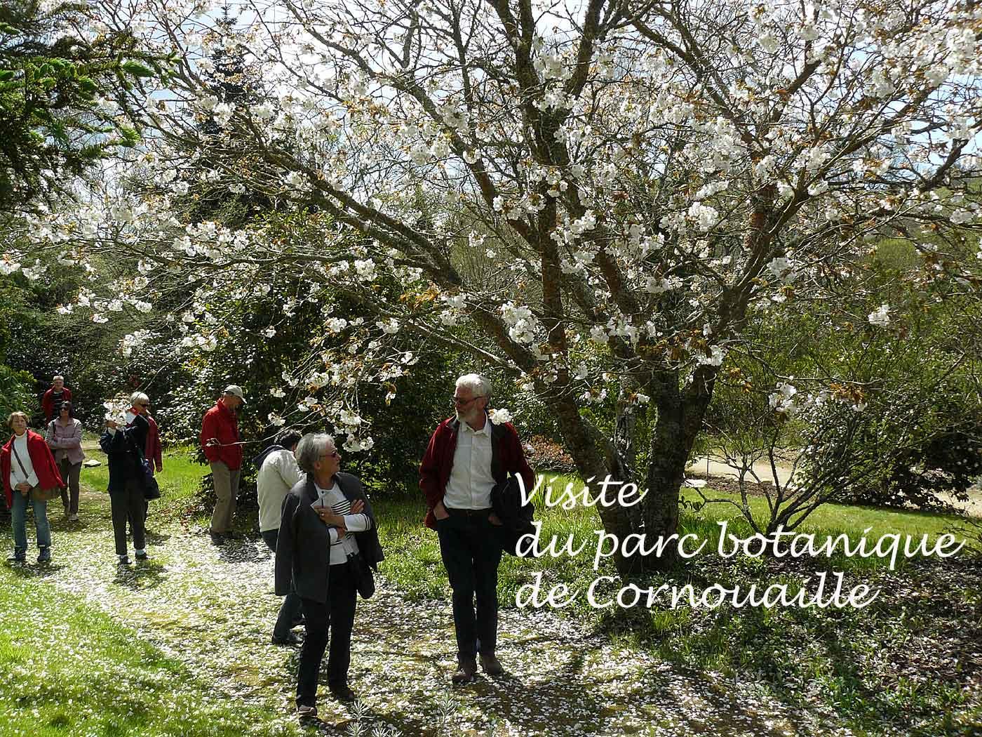 Parc botanique de cornouaille 29 arrosoirs et s cateurs - Jardin botanique de cornouaille ...
