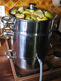 Gel e et p te de coings arrosoirs et s cateurs - Gelee de groseille avec extracteur de jus ...