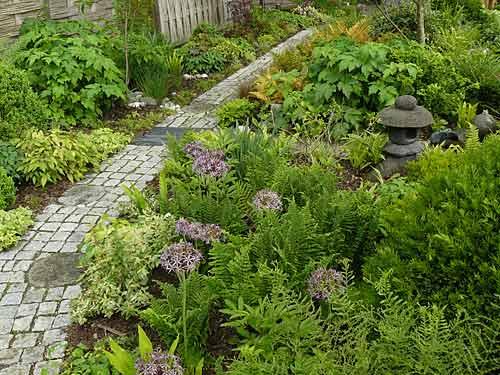 Le jardin de la grenouill re les essarts le roi for Jardin 50m2 amenager