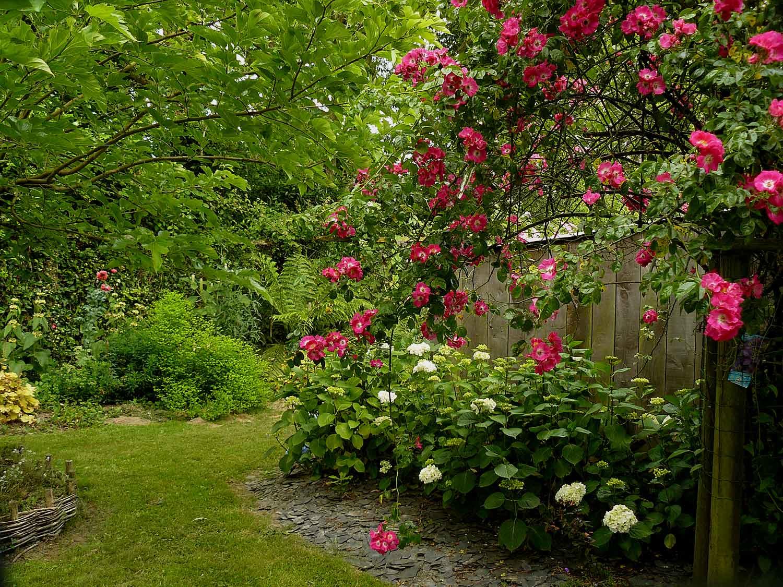 Jardin des landes le ferr 35 arrosoirs et s cateurs for Entretien jardin landes