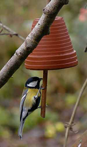 les oiseaux vous y pensez arrosoirs et s cateurs. Black Bedroom Furniture Sets. Home Design Ideas