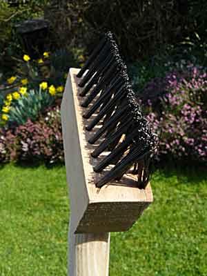 un jardin breton en mars 2013 arrosoirs et s cateurs. Black Bedroom Furniture Sets. Home Design Ideas