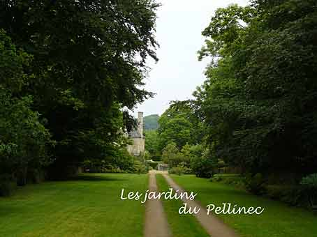Le jardin du pellinec juin 2009 arrosoirs et s cateurs - Jardin du pellinec ...