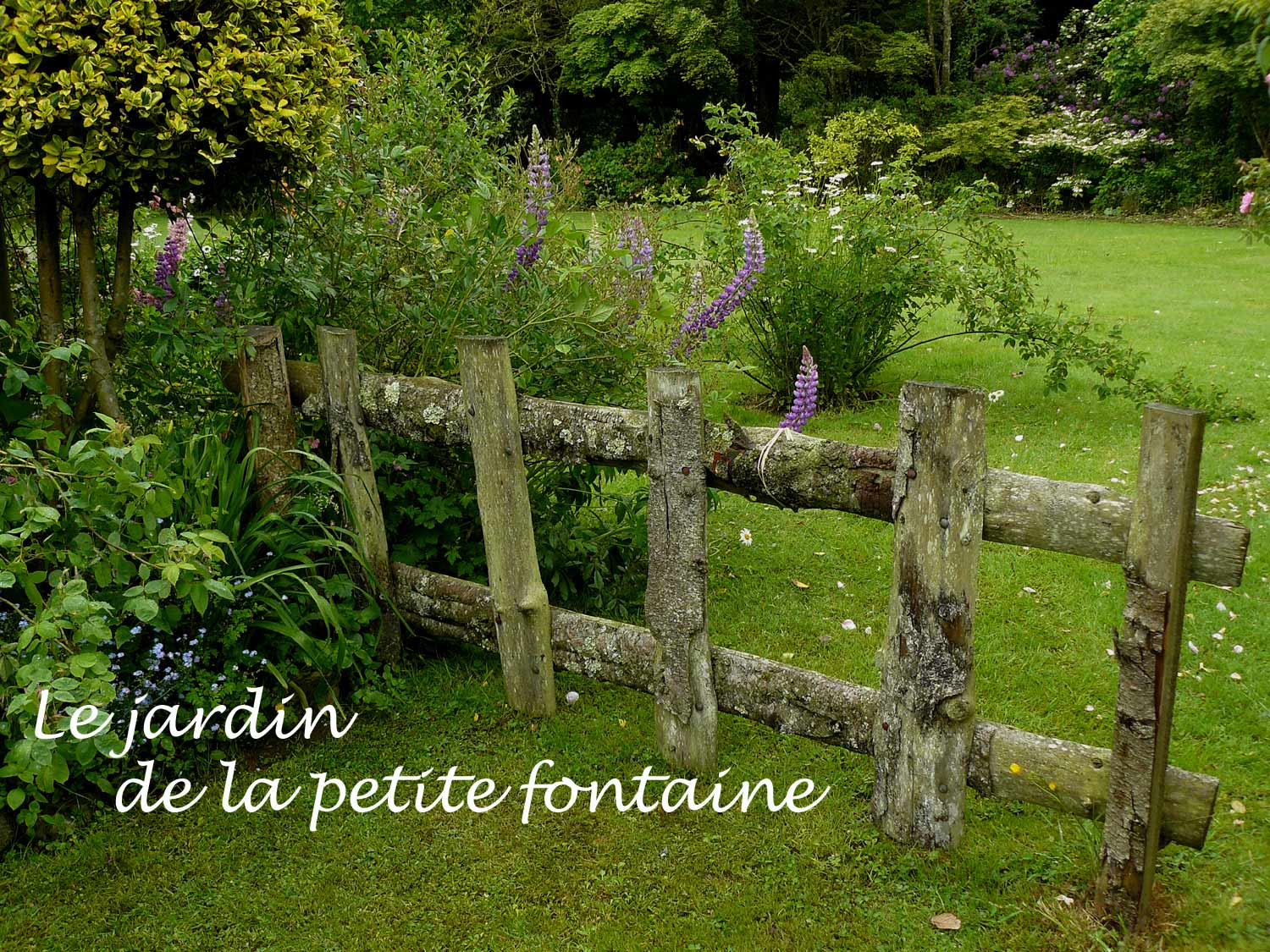 le jardin de la petite fontaine perret 22 arrosoirs et s cateurs. Black Bedroom Furniture Sets. Home Design Ideas