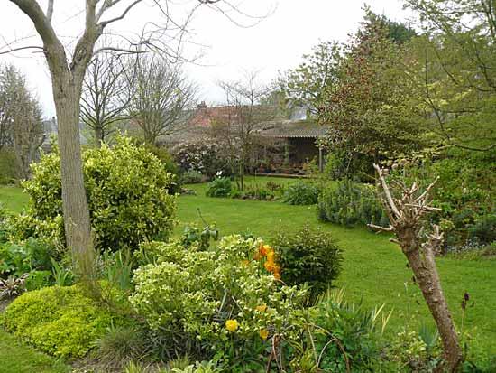 Quel arbre planter devant une maison free bien que la - Comment cuire les petit pois du jardin ...