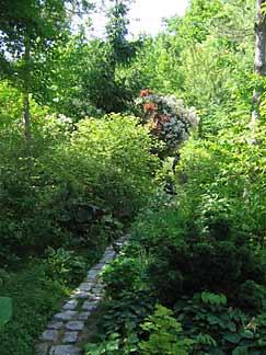 Un jardin d\'ombre - Arrosoirs et Sécateurs
