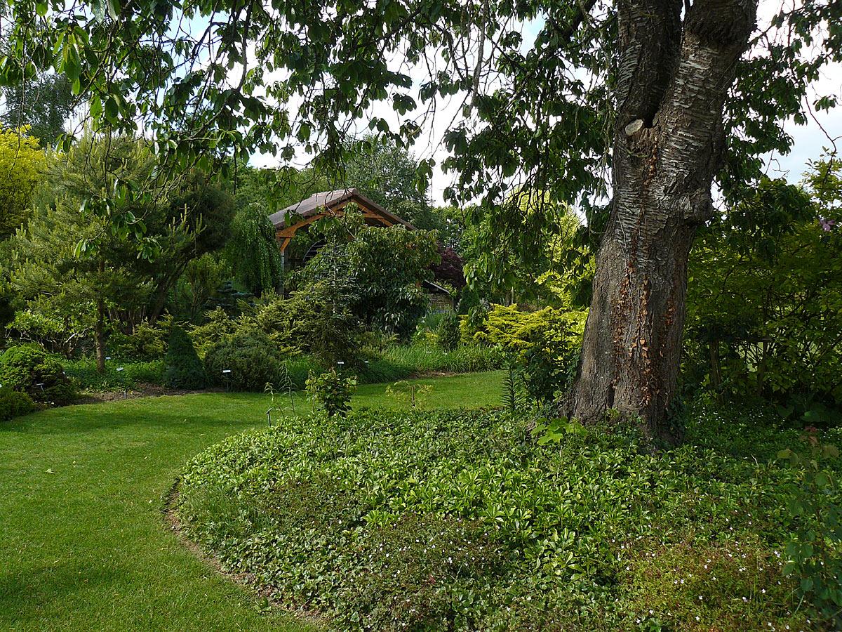 Jardin des renaudies 53 arrosoirs et s cateurs for Entretien jardin 53