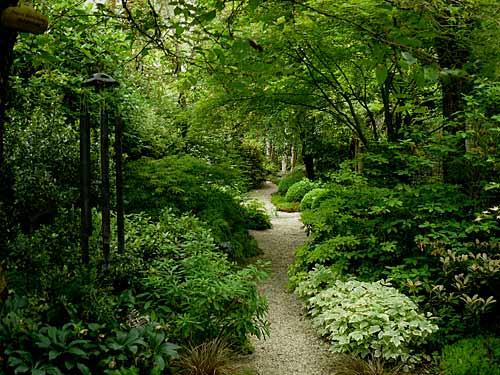 Les jardins de sonja le perray en yvelines arrosoirs - Sous bassement en bois ...