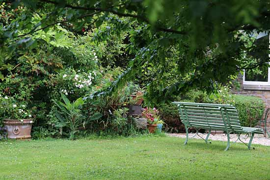 entretien jardin plouha