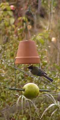 mangeoire oiseaux a faire soi meme perfect faire nourriture oiseaux with mangeoire oiseaux a. Black Bedroom Furniture Sets. Home Design Ideas